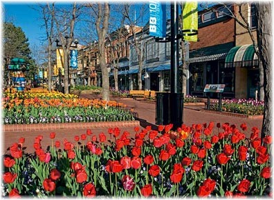 Charming downtown for Jewelry stores boulder co